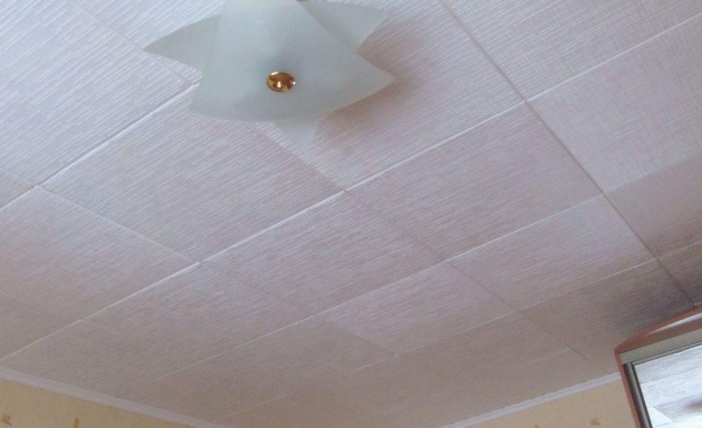 или виды потолочных плиток фото например
